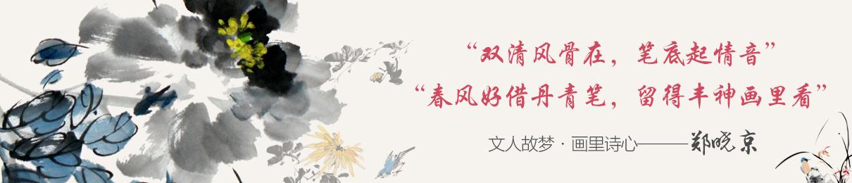 鄭曉京官方網站