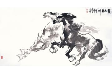陈云鹏三尺横幅动物画国画骏马图系列《龙