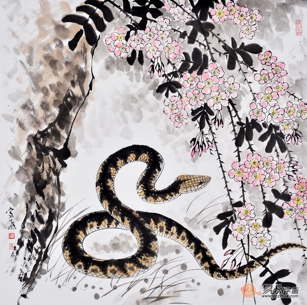 富飞四尺斗方动物画作品十二生肖《蛇》