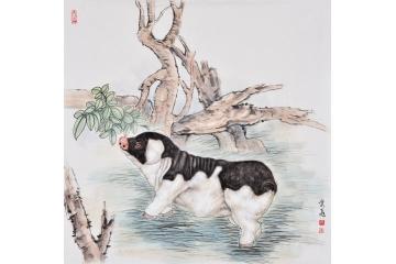 富飞四尺斗方动物画作品十二生肖系列《猪》