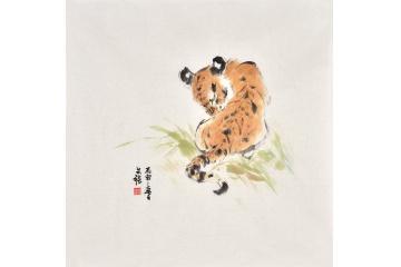 老虎画 斗方画王文强动物画虎系列《卧虎》