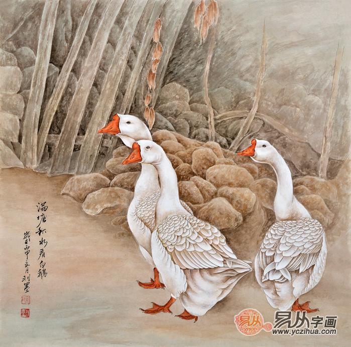 客厅装饰画 羽墨工笔斗方动物画 大白鹅《满堂秋水看白鹅》