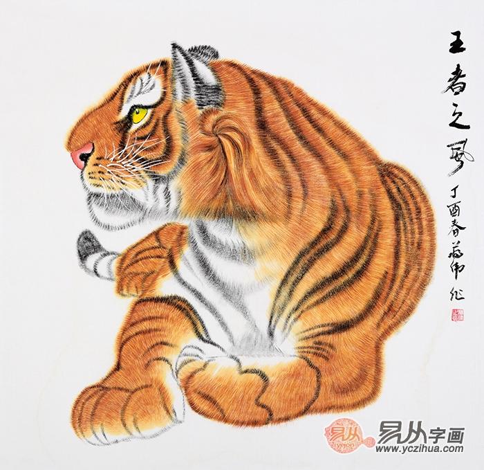 动物 突破 创意手绘