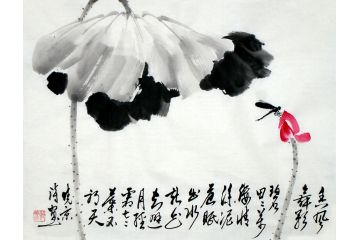 水墨荷花 實力派畫家鄭曉京《紅荷蜻蜓》