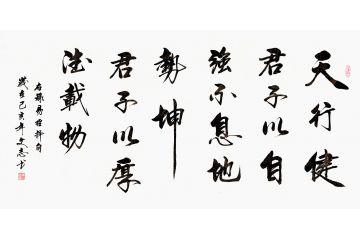 中書協會員李文志行書書法《天行健》